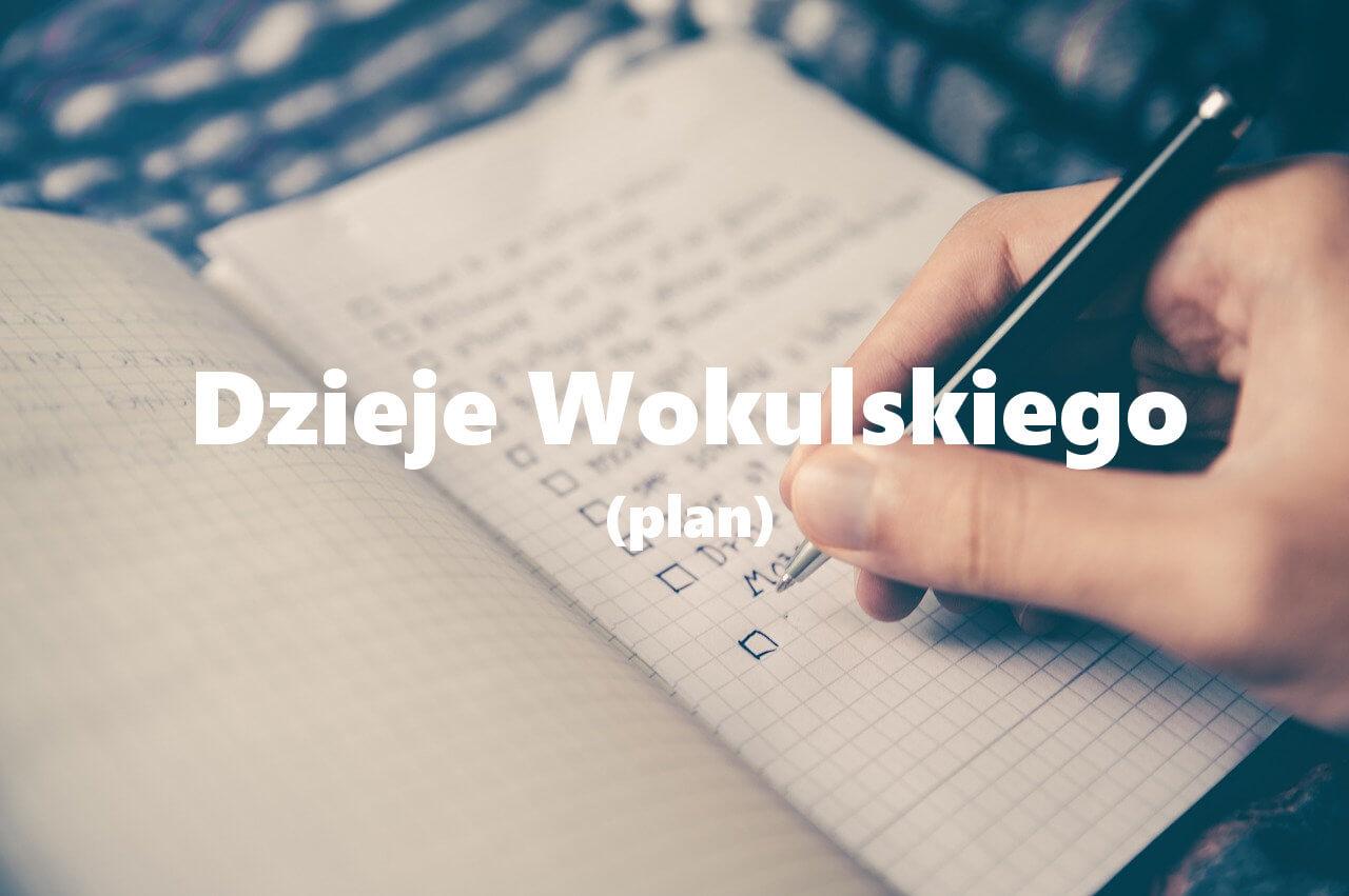 Dzieje Stanisława Wokulskego (plan)