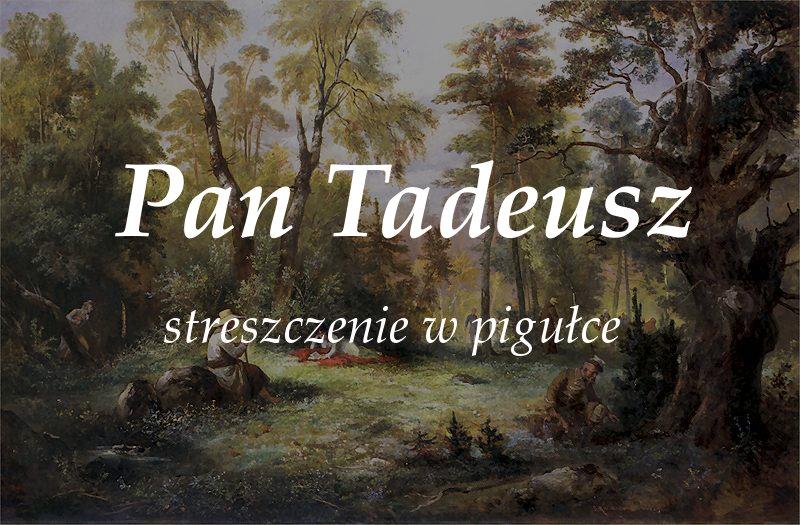 """Pan Tadeusz - streszczenie """"w pigułce"""""""
